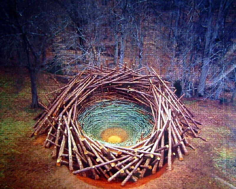 NILS-Udo_Clemson-clay-nest